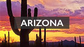 AZ USA state graphics